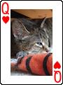 Acecardset-queen-hearts