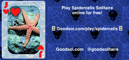 Playspidercells