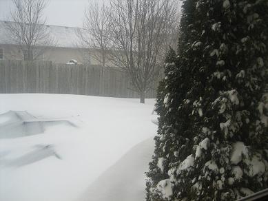 Blizzard2007